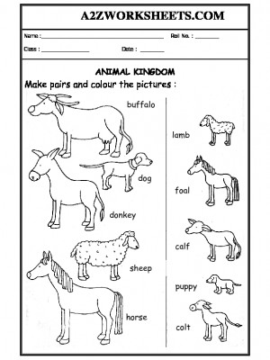a2zworksheets worksheets of domestic animals animals science. Black Bedroom Furniture Sets. Home Design Ideas