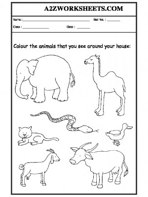 Worksheet-06-Animals around your home
