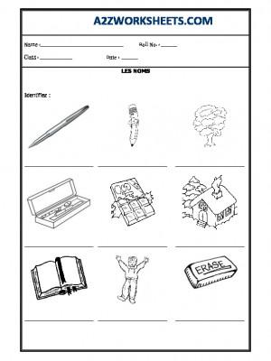 French Worksheet - Les Noms