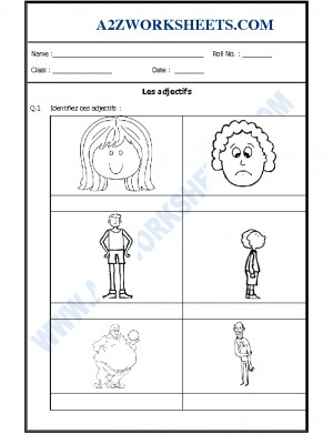 French Worksheet - Les adjectifs