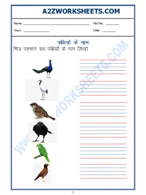 Hindi Worksheet - Name of Birds in Hindi