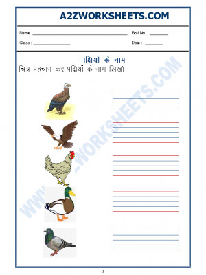 Hindi Worksheet - Name of Birds in Hindi - 02