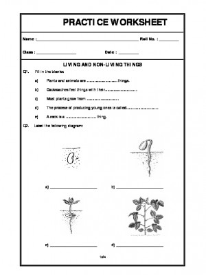 a2zworksheets worksheets of living organisms and their surrounding plants and living organisms. Black Bedroom Furniture Sets. Home Design Ideas