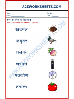 Hindi Worksheets - Match the word to picture-06