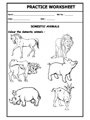 A2Zworksheets:Worksheet of Domestic Animals