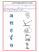Language Hindi Worksheets for KG - Match the picture to the alphabet-05