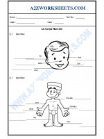Language French Worksheet - Le Corps Humain