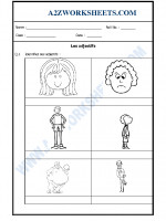 Language French Worksheet - Les adjectifs