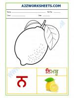Language Punjabi Language - Akhar nana