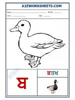 Language Punjabi Language - Akhar babba