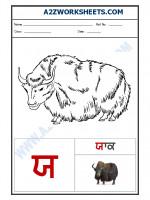 Language Punjabi Language - Akhar yaiyya