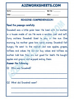 English English Comprehension - 17