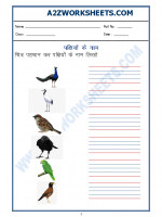 Language Hindi Worksheet - Name of Birds in Hindi