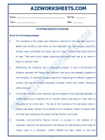 English English Comprehension Passage-47