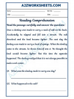 English English Comprehension - 26
